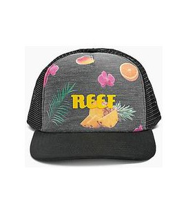 Casquette Reef Colors Hat